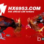 HX6953 Terbaru Link S128 Sabung Ayam Indo
